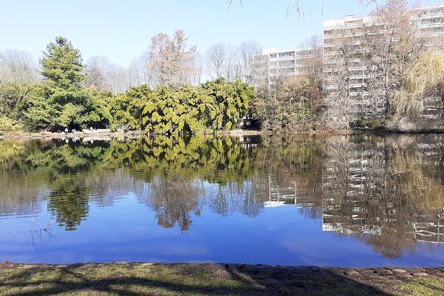 März 2021 ... Herzogenriedpark Mannheim ... Brigitte Stolle