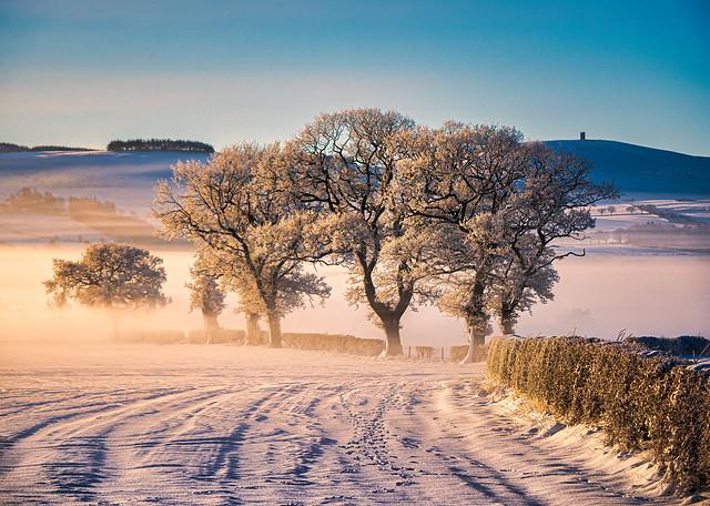 Winter in Strathmore
