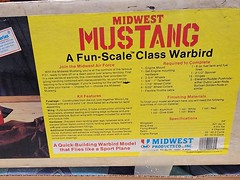 Midwest Mustang