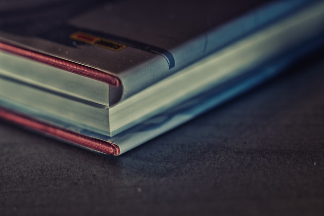 IMGP8292-Bookmark for Macro Mondays.jpg