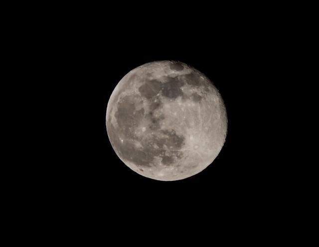 Worm moon - Full moon