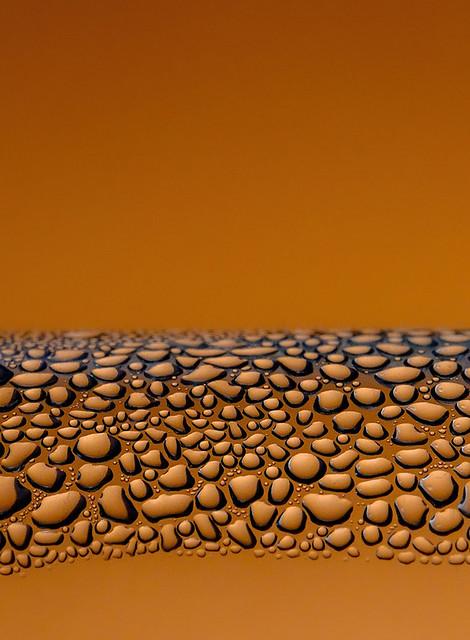 365 - Image 61 - Orange...