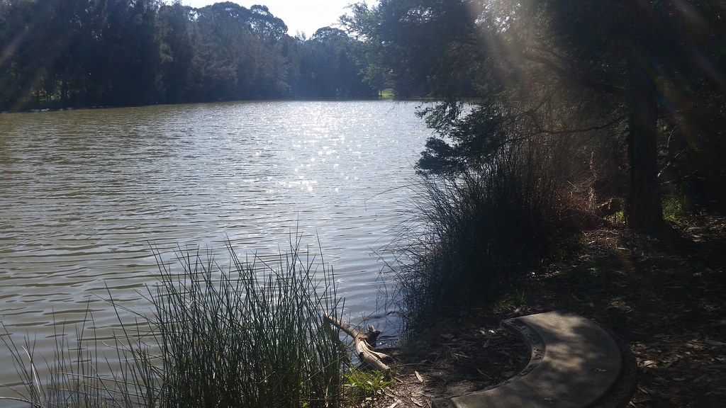 Caddies Creek, Kellyville, NSW, 2020