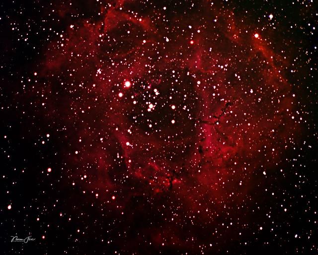 Rosette Nebula NGC 2244