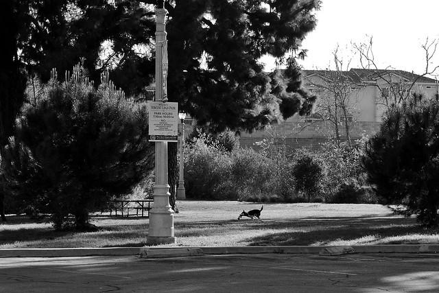 P1250444 Alhambra, Los Angeles County