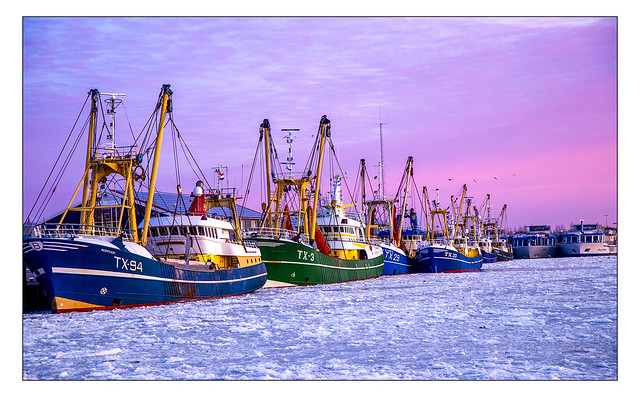 Early morning colors in frozen fishing harbor