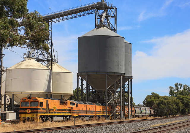 FQ01 CLP14 CLF5 and GWA008 have just arrived under the Grainflow loader at Dimboola on AK1 ORA grain