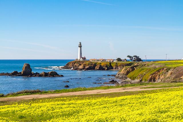 Armchair Traveling - Pigeon Point Lighthouse, Half Moon Bay, California