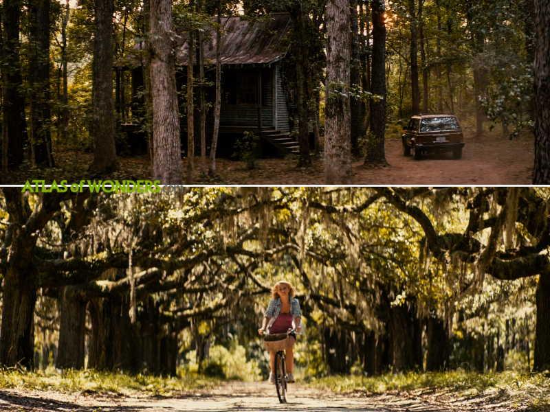 Katie's cabin house