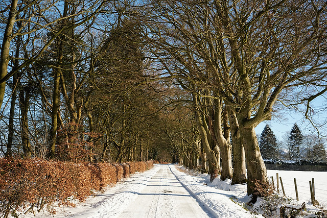 Snow track, Hatchbank Road