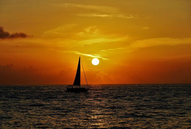 Seascape Sail