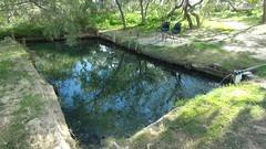Pool on the Birdsville Track