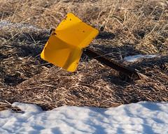 Sign, snow, grass