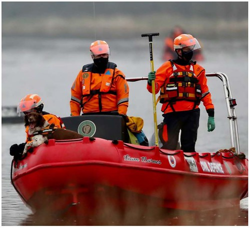 Missing Person Search, Kildare - March 2021