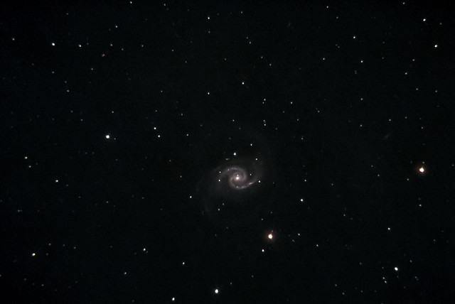 NGC 1566 in the constellation Dorado at a distance of 69 million Light-years.