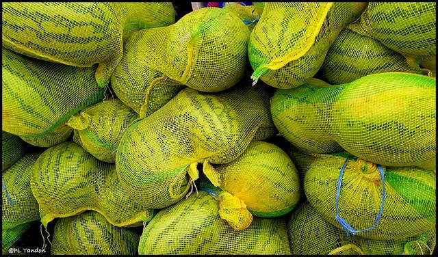 Watermelon -  Farm to Store