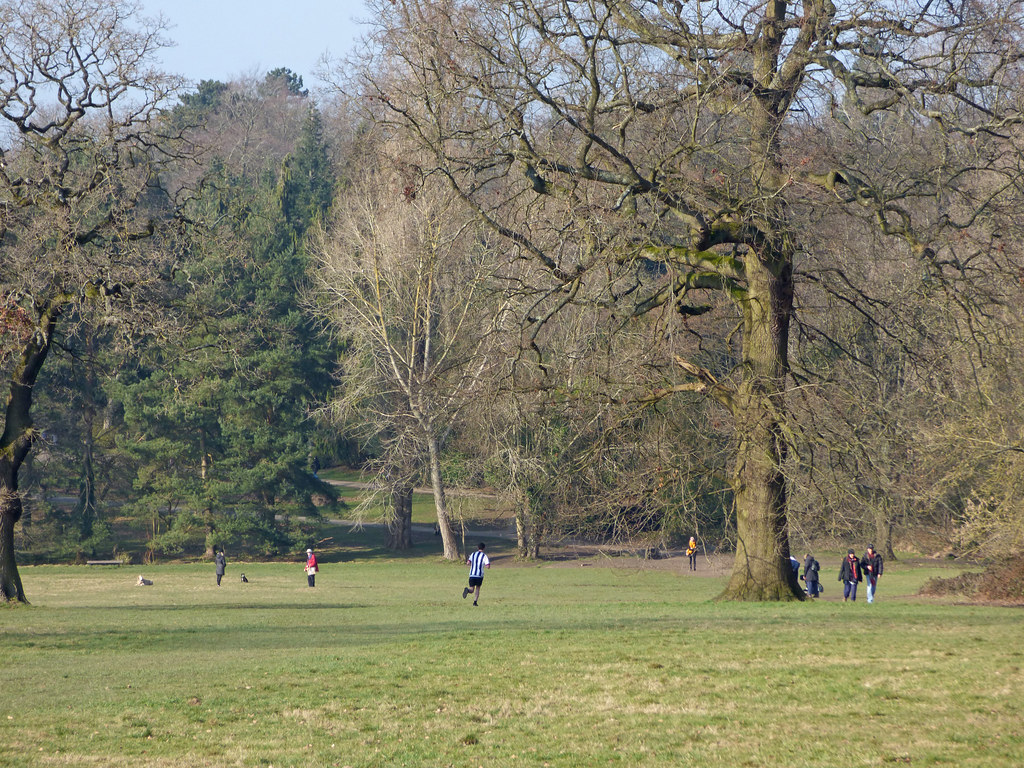 The sun is shining at Highbury Park - out for a run