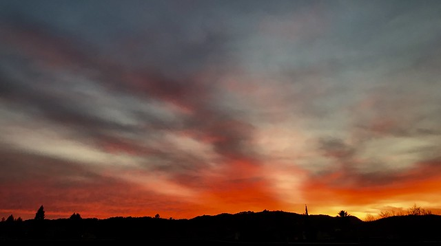 Good Night Sun  March 2,2021