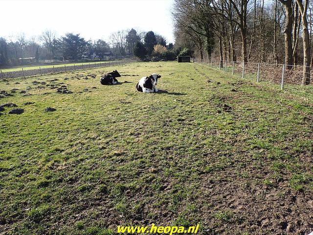 2021-03-02   Voetstappen pad   Hilversum 31 Km   (55)
