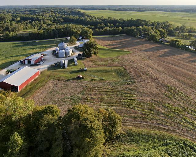 A farm with trees