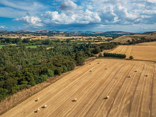 2021 aerialphotography carterton cartertonscenicreserve djimavicpro drone dronephotography landscape newzealand rural scenic wairarapa wellington
