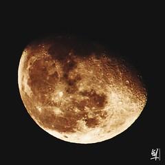 Lunar curiosity