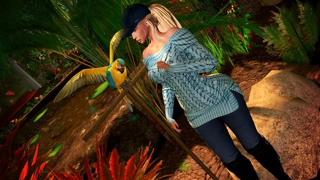 # 607 Birds