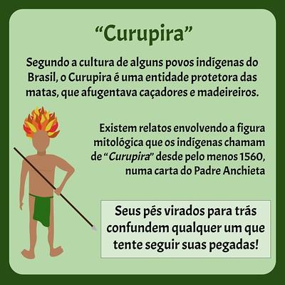 Ibitermes curupira.pptx (1)