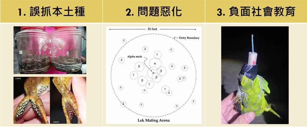 缺乏移除外來入侵種規範的三大問題。圖表提供:台灣動物社會研究會