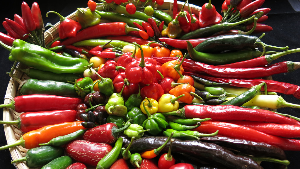 Lots of different coloured chillis in a bowl