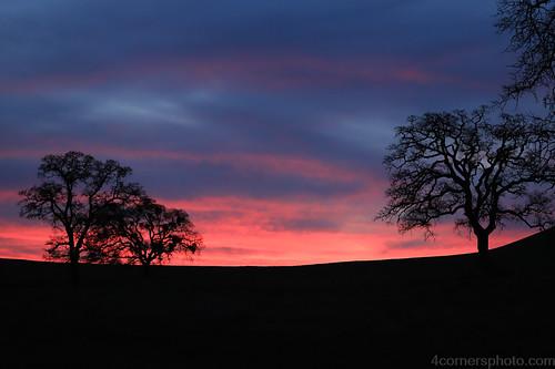 calaverascounty california centralvalley clouds dusk hill landscape motherlode nature northamerica oak outdoor pasture rural sanjoaquinvalley sky sunset tree unitedstates valleyoak weather winter valleysprings
