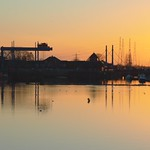Golden Preston Docks