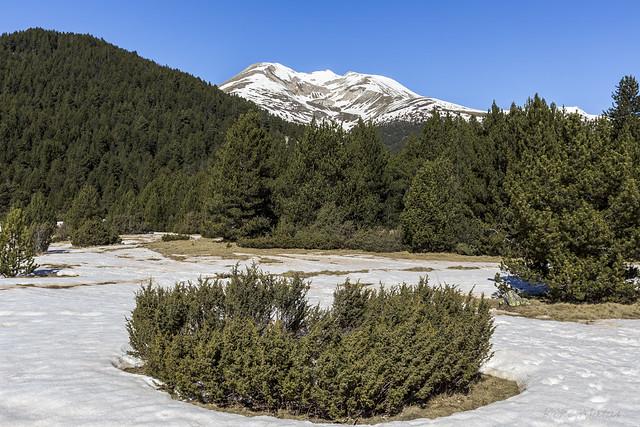 Pic de Casamanya desde el Planell de les Basses, Andorra
