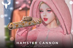 -MUSU- Hamster Cannon @ Anthem