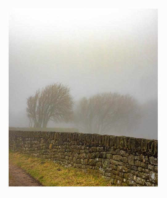 boundary wall ii