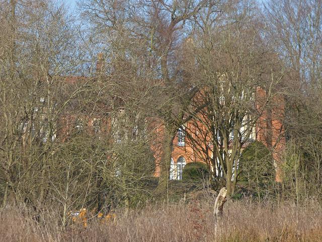 Highbury Hall behind the trees from Highbury Park