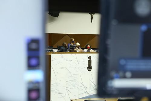 1ª Reunião: Comissão Especial de Estudo Empregabilidade, violência e homicídio de jovens negros