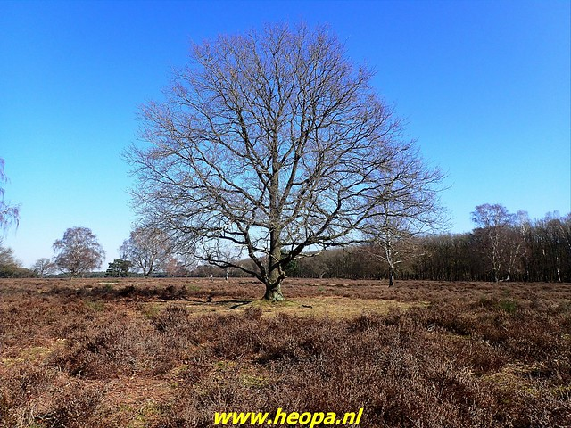 2021-03-02   Voetstappen pad   Hilversum 31 Km   (45)