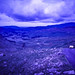 "<p><a href=""https://www.flickr.com/people/fateapics/"">Neilfatea</a> posted a photo:</p>  <p><a href=""https://www.flickr.com/photos/fateapics/50999813861/"" title=""Hardknot Pass 86 - Photocredit Doug King -3""><img src=""https://live.staticflickr.com/65535/50999813861_b12040224b_m.jpg"" width=""240"" height=""160"" alt=""Hardknot Pass 86 - Photocredit Doug King -3"" /></a></p>  <p>Recovered from negative</p>"