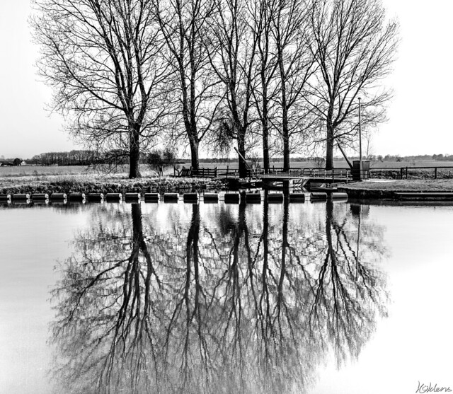 Roots Of Reflection
