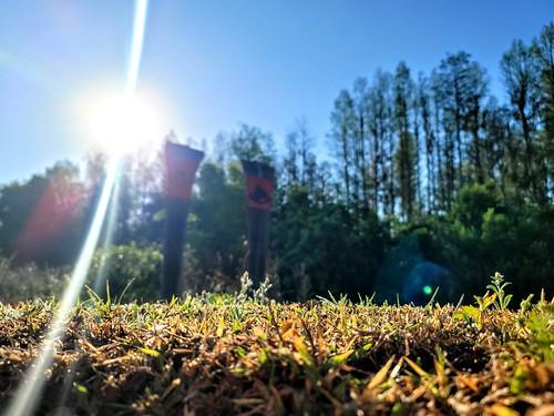 ranchsunrise ranch ranchflorida farmsunrise farm floridafarm floridasunrise florida floridagoldenhour sunrise sunray lensflare sunriseflorida