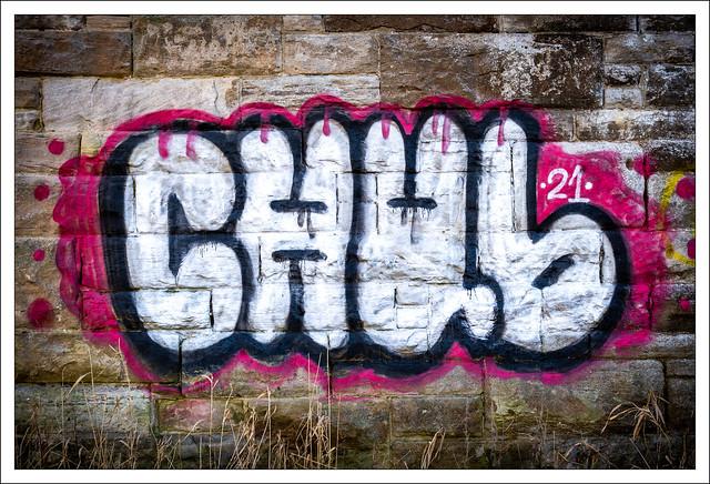 Chub...