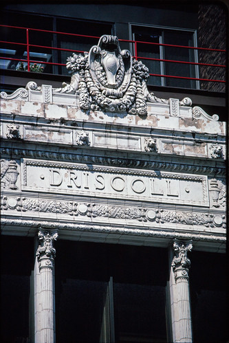 Driscoll (1)