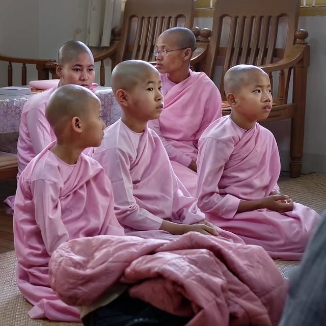 Nonnes au couvent Zeyatheingi à Sagaing