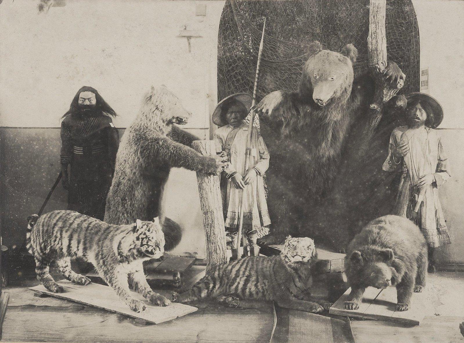 10. Чучела животных и модели людей в экспозиции музея