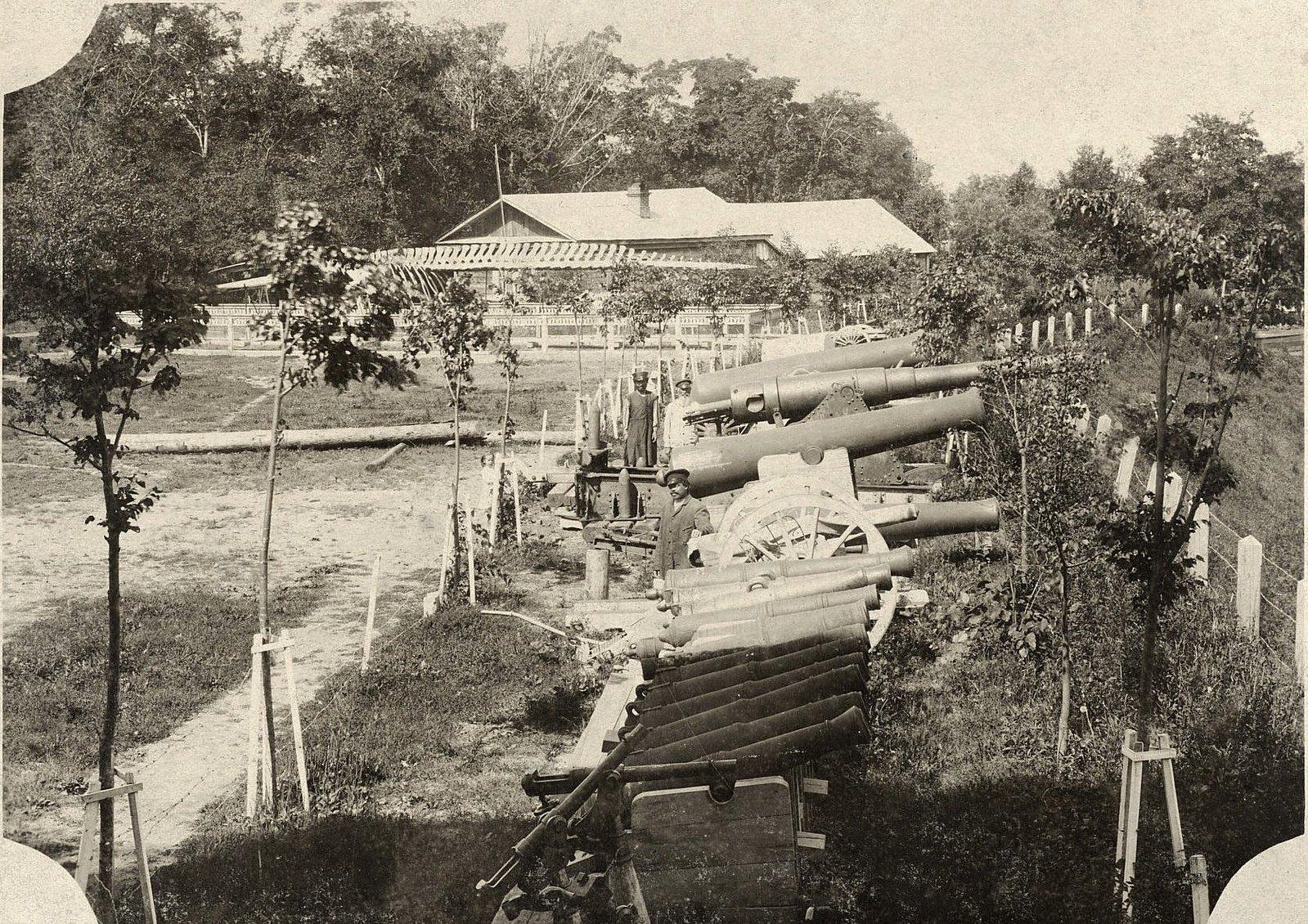 09. Вид части территории музея с артиллерийскими орудиями и скелетом кита
