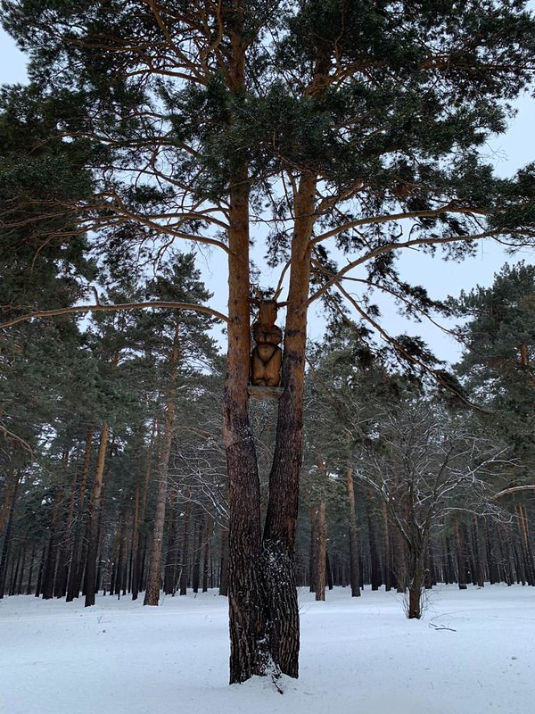 Прокопьевск - Зенково - Санаторий Шахтер - Скульптура в лесу