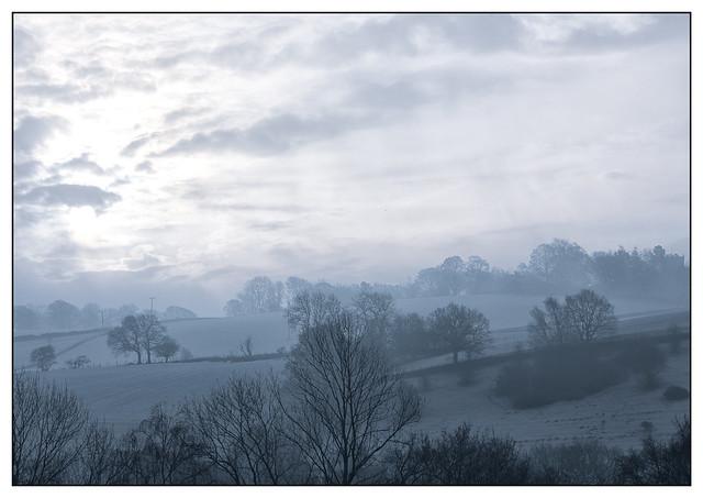 Daybreak 8239