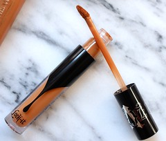 Basic Concealer Makeup Tips