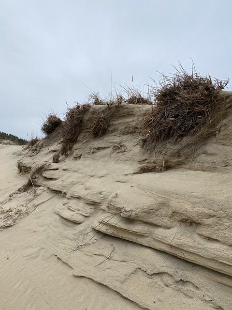 FC False Cape Dunes